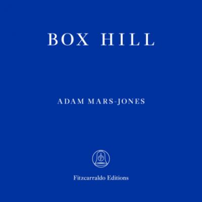 Box Hill (unabridged) - Adam  Mars-Jones